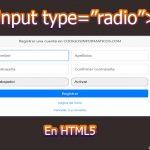 "input type=""radio"""